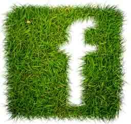 فیسبوک آفبا