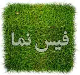فرهیختگان شریف مهر