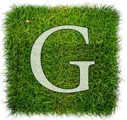 گوگل پلاس آفبا